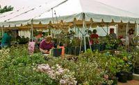 Garden_fair_homepage