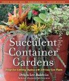 Container succulent gardens