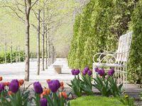 Modern-gardens Miller House