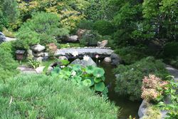 Pond--bridge_judyhorton_web576x384 gdn conservancy
