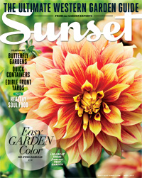 Sunset-cover-apr13-m