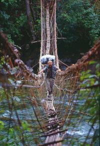 Vine_bridge_NYBG Myanmar 2