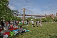 Brooklyn Bridge Park - Van Valkenburgh