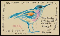 Beinecke 24 CVV_Bird_Postcards_06