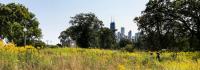 Chicago_Skyline_hero_CharlesABirnbaum_2017
