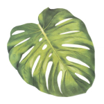 NYBG Monstera Placemat