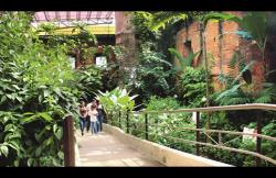 Costa Rica Museum 2