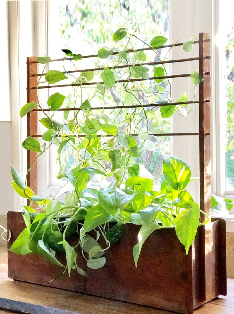 19 0409 Terra Tr. corten-steel-window-box-trellis-modern-window-box