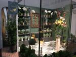 20 PA Fl. Flower Shop