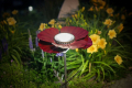20 1211 night_view_of_solar_light_in_garden
